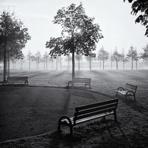 Park Assumburg