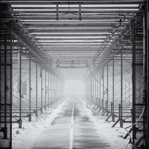 Tunnelvisie - Luttik Cie